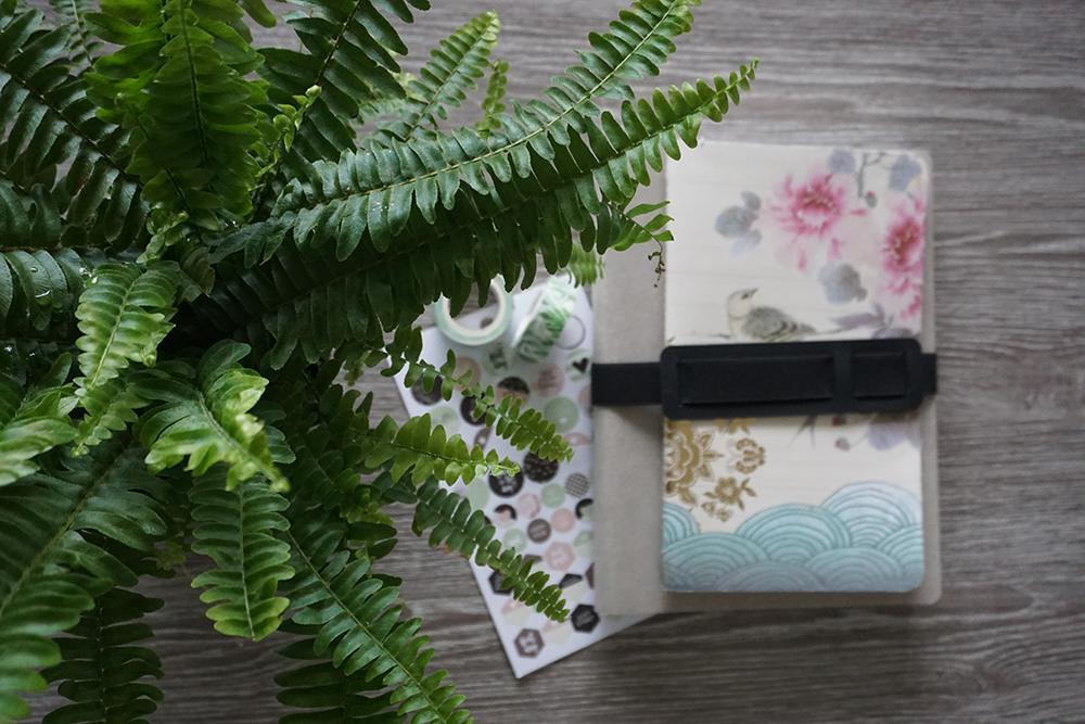 kasvi saniainen vihko notes kynät washi teippi nuuna