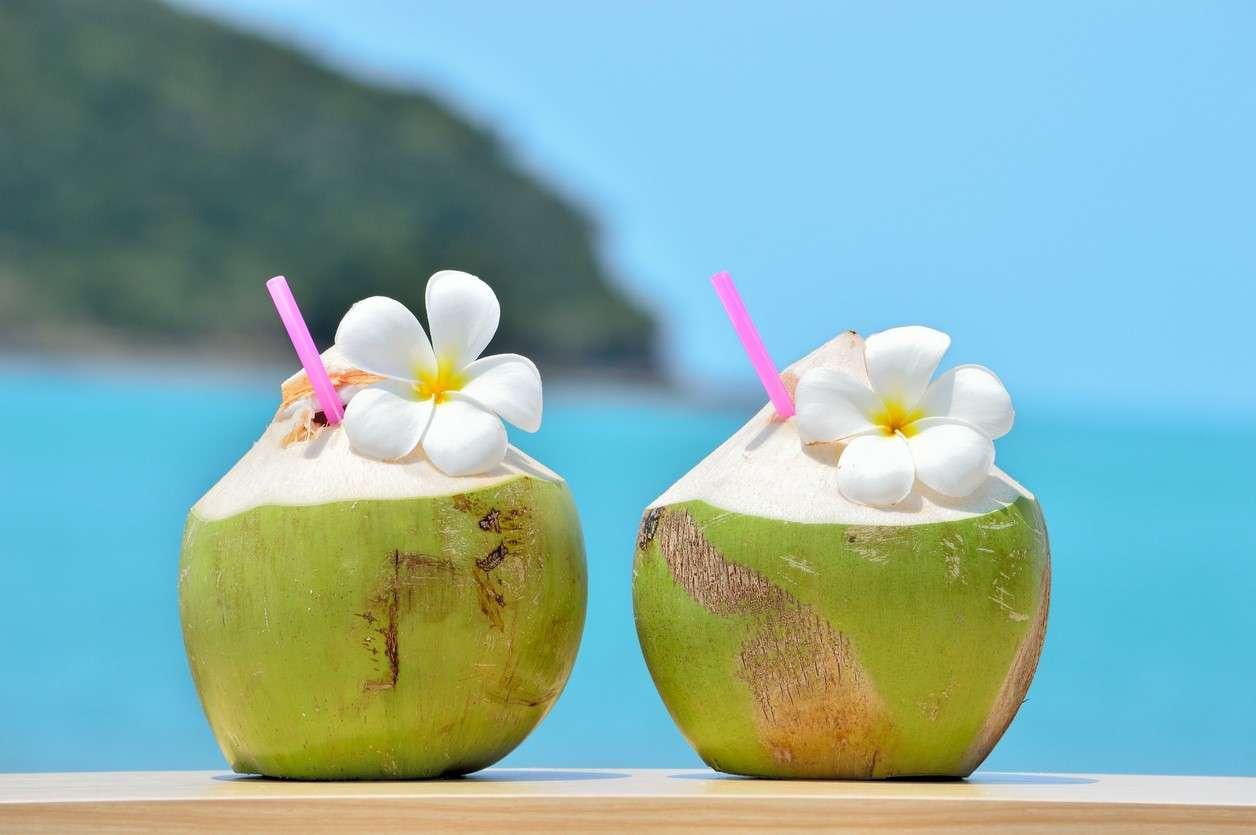 13 Benefícios da Água de Coco à Saúde