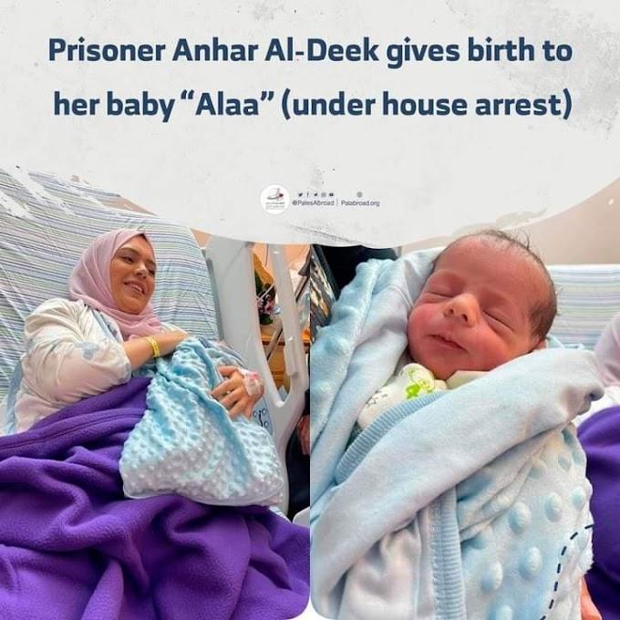 """ANHAR AL-DEEK"" WANITA PALESTIN TAHANAN REJIM ISRAEL SELAMAT MELAHIRKAN BAYI LELAKI"