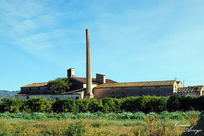 Molino arrocero y partidor de agua en las afueras de l'Enova, Comunidad Valenciana.