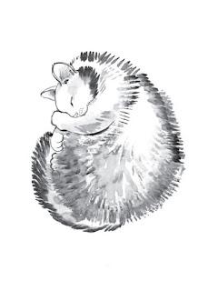 илюстратор