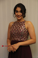 Actress Regina Candra Latest Stills in Maroon Long Dress at Saravanan Irukka Bayamaen Movie Success Meet .COM 0026.jpg
