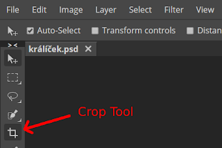 How To Crop A Photo Online