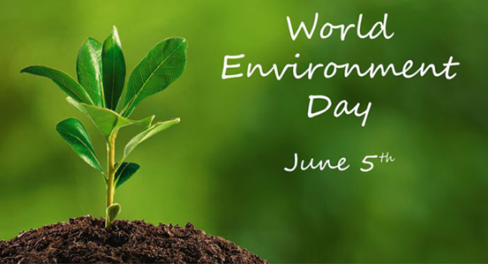 World+Environment+day