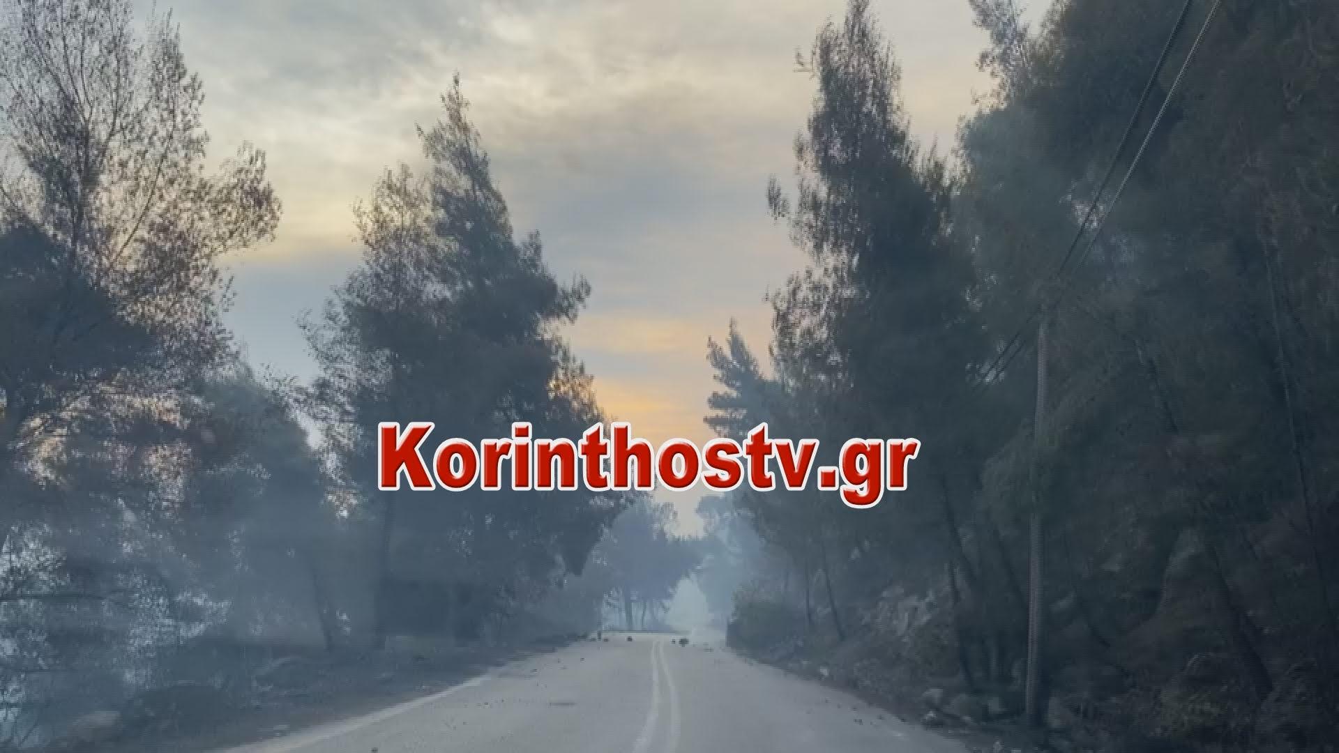 Ανεξέλεγκτη η φωτιά στην Κοκκιναρέα