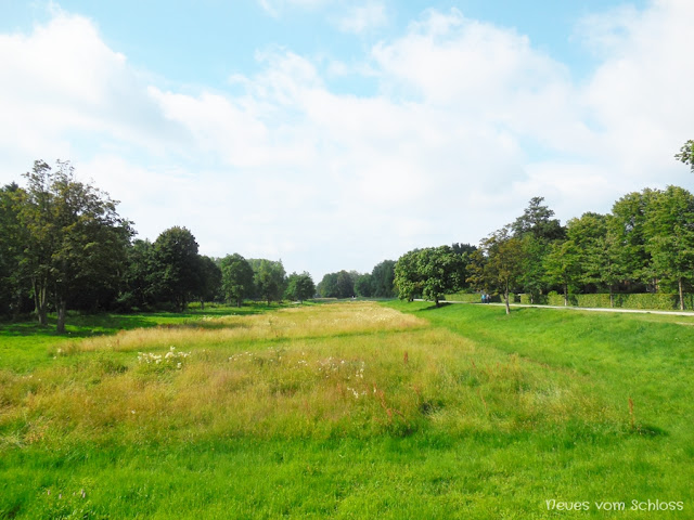 12tel Blick Juni 2017, Flutwiesen- neuesvomschloss.blogspot.de