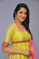 Actress Richa Panai Latest Pos in Yellow Anarkal Dress at Rakshaka Bhatudu Telugu Movie Audio Launch Event  0008.JPG