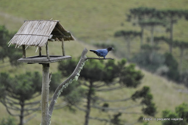 Parador Casa da Montanha Ecovillage