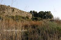 ישראל בתמונות: נחל פולג