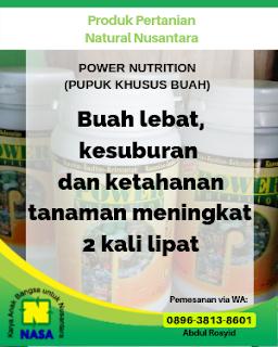 Power Nutrition 350gr