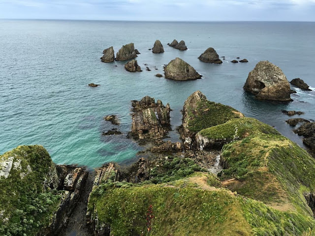Nugget Point & The Nuggets