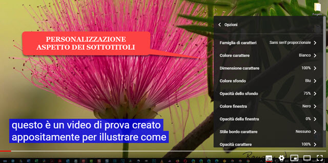personalizzazione aspetto sottotitoli