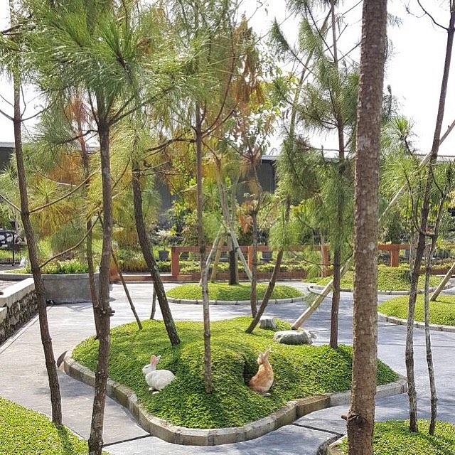 Wisata Malang Selatan Terbaru: Taman Kelinci Milkindo Wisata Edukasi Di Seputar Kepanjen