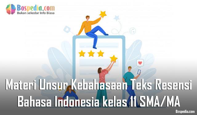 Materi Unsur Kebahasaan Teks Resensi Mapel Bahasa Indonesia kelas 11 SMA/MA