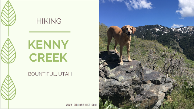 Hiking the Kenny Creek Trail