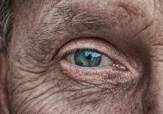 fungsi kolagen untuk wajah