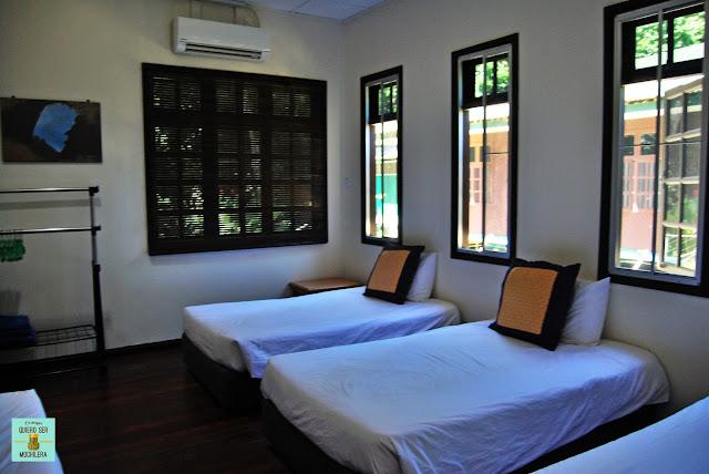 Alojamiento en Parque Nacional del Gunung Mulu (Borneo, Malaysia)