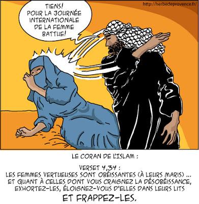 Lettre à mes sœurs françaises : attention aux prédateurs islamiques !