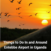 Things to Do In and Around Entebbe Airport in Uganda