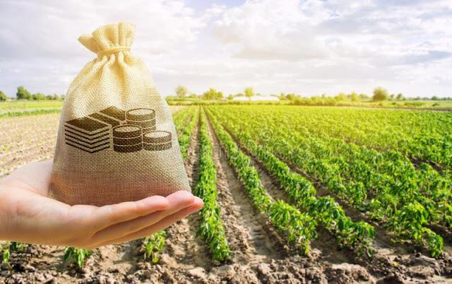 Инвестиции в землю в 2022 году: преимущества и недостатки