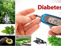 Membuat Ramuan Herbal untuk Obati Kencing Manis (Diabetes Melitus) dari Prof. H.M. Hembing Wijayakusuma