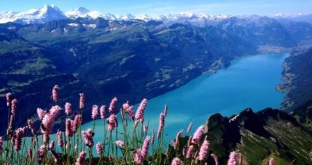 Tempat Wisata Paling Indah Untuk Dikunjungi Di Negara Swiss  Interlaken