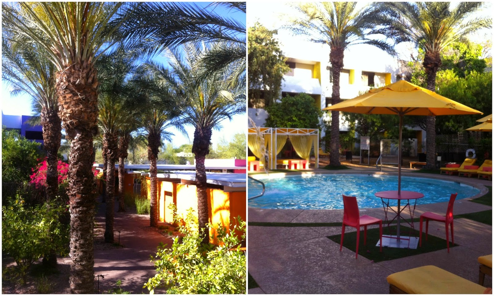 The Saguaro Hotel Scottsdale Arizona