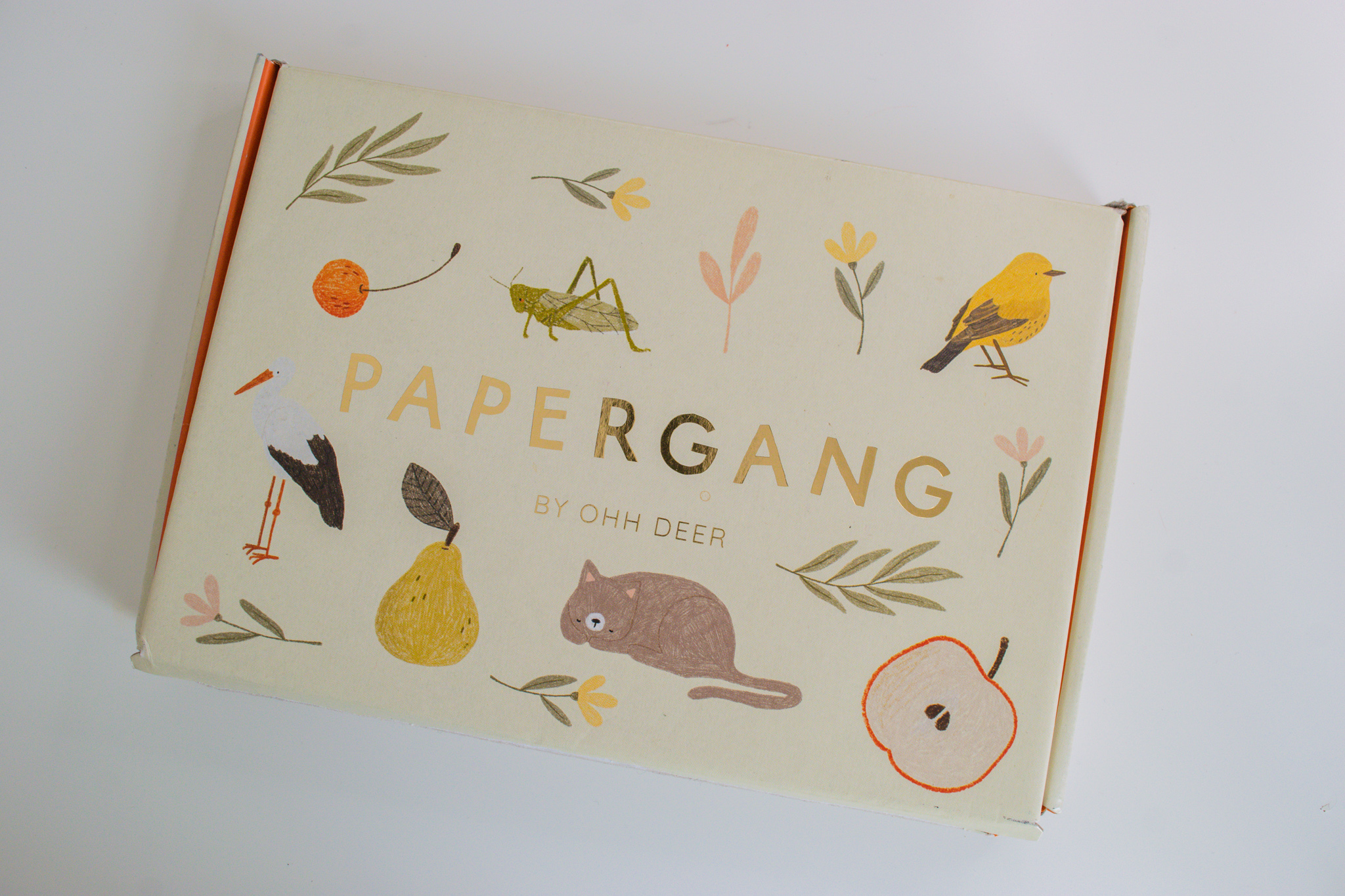 Papergang box packaging with animals and plants