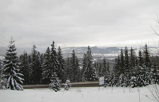 Droga Oswalda Balzera z zielonego szlaku w Toporowej Cyrhli.