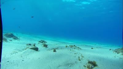 Ocean Sediment graphic