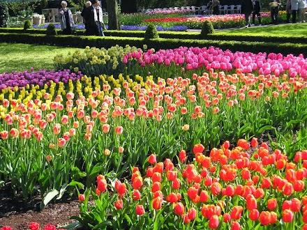 Δημιουργήστε ένα πετυχημένο κήπο φυτεύοντας βολβούς την άνοιξη.