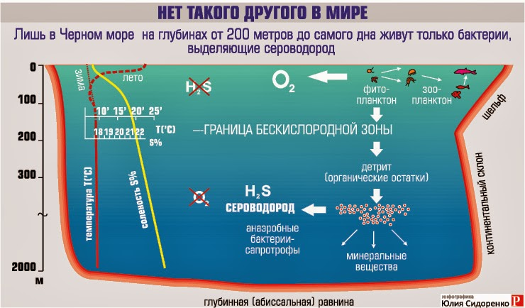 Сероводород в Черном море