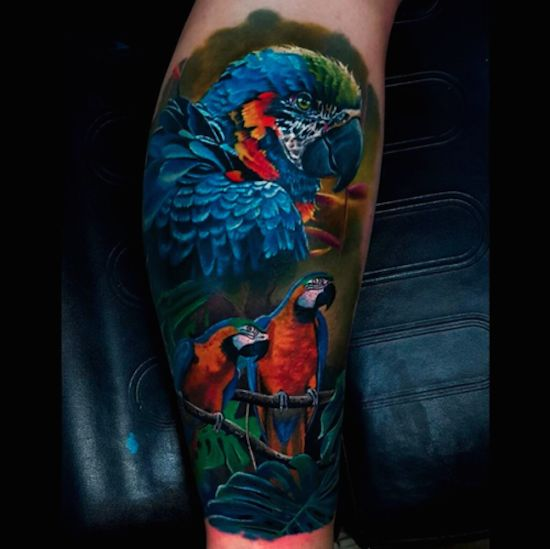 color parrot tattoo