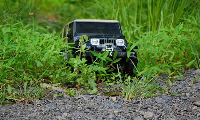 Tamiya Jeep Wrangler crawler