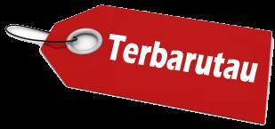 terbarutau.blogspot.com