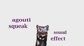 how agouti animals sounds