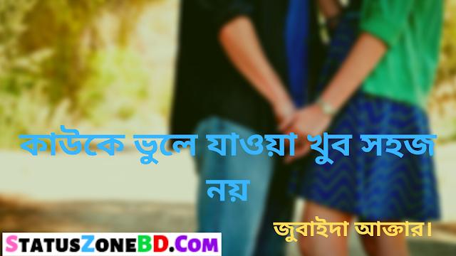 কাউকে ভুলে যাওয়া খুব সহজ নয় - Bangla Poem | Bangla Sad Status