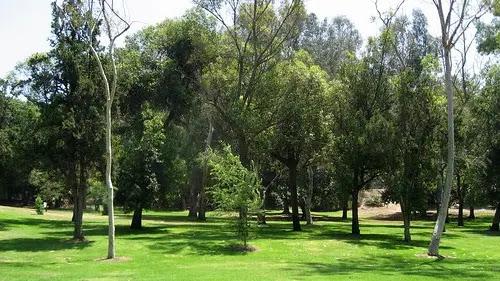 Chavez Ravine Arboretum Los Angeles, USA