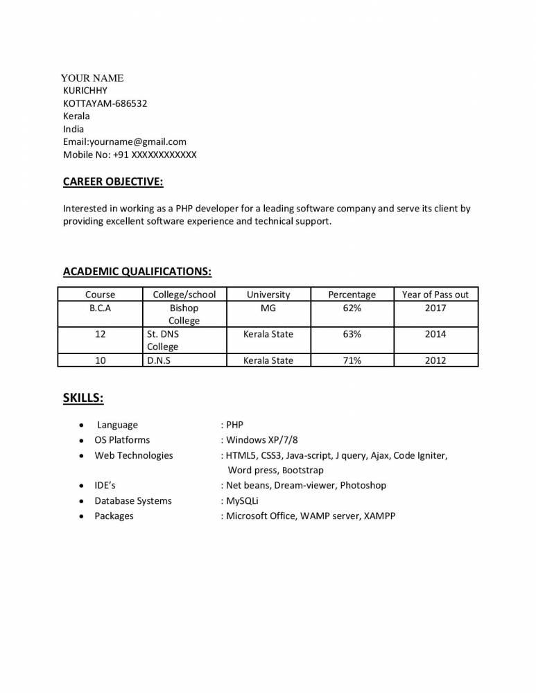 Best PHP Website Developer CV/Sample Resume - Download!! - Resume