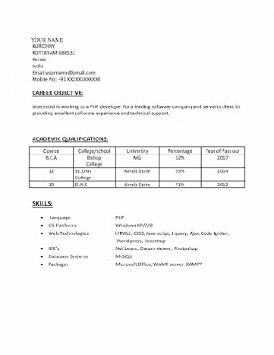 PHP Experience Resume 1