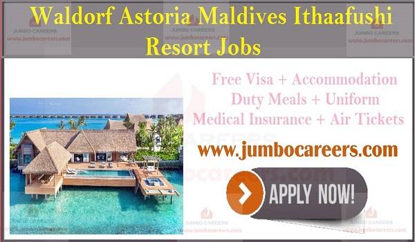 5 star Luxury resort jobs in Maldives, Available job sin Maldives,