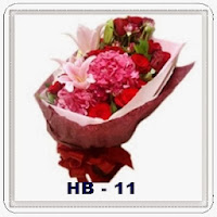 HB 11