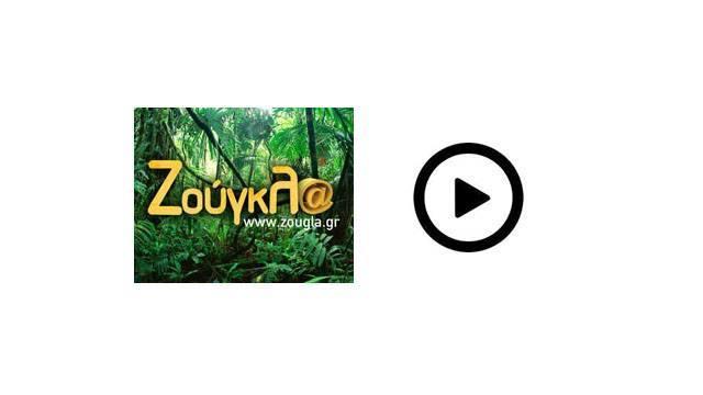 ΖΟΥΓΚΛΑ TV
