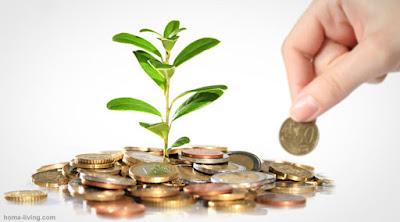 Gambaran Peluang Bisnis di Bidang Investasi