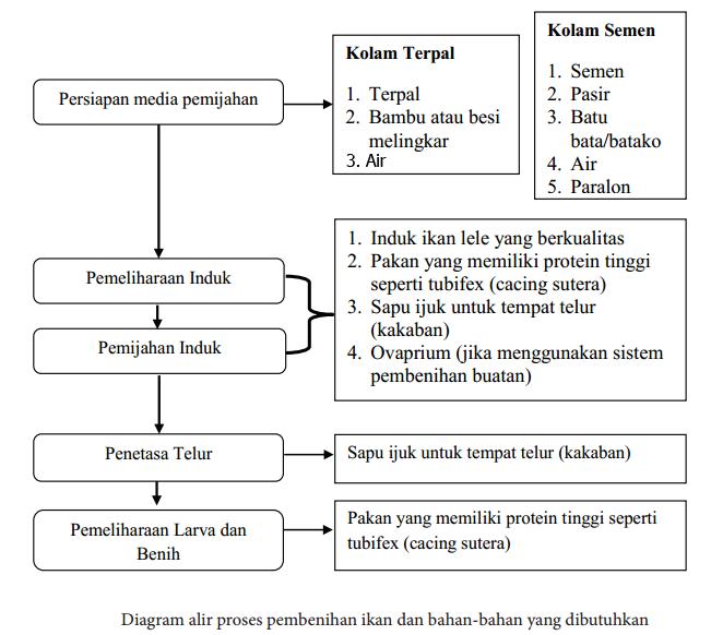 Diagram alir proses pembenihan ikan dan bahan-bahan yang dibutuhkan