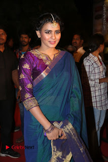 Actress Hebha Patel Stills in Green Silk Saree at Gemini TV Puraskaralu 2016 Event  0028.JPG
