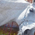 El caballo olfatea el féretro. Cuando se da cuenta de quién está dentro, su reacción hace que los presentes rompan en llanto