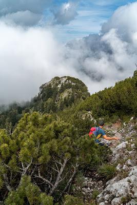 Gamsknogel und Kohleralm  Bergtour Inzell  Wanderung Chiemgauer Alpen 10