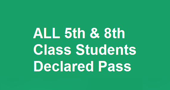 ALL 5th & 8th Class Students Declared Pass in Punjab 2018 Results