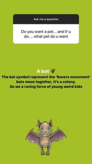 I Would Love To Have A Bat As A Pet _ Rema